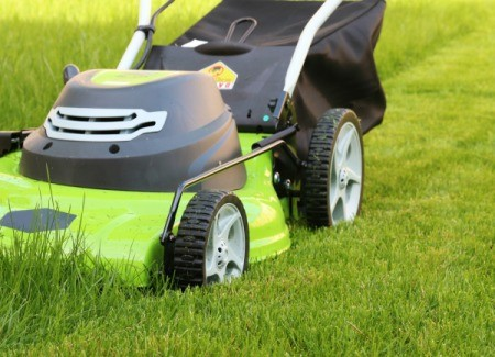 Lawn Care Tips and Tricks