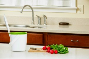 countertop compost bucket