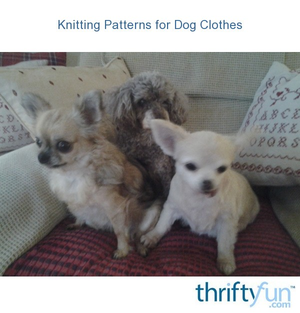 Knitting Patterns For Dog Hoodies : Knitting Patterns for Dog Clothes ThriftyFun