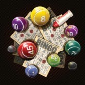 bingo balls, cards and marker