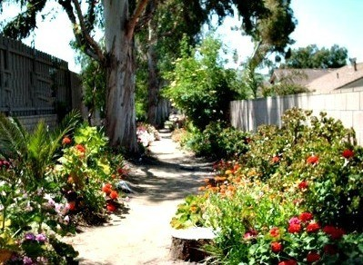 view down the path garden