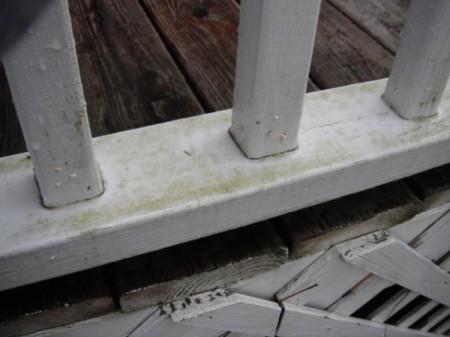 Cleaning Mildew Off Vinyl Deck Railings Thriftyfun