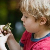 Boy with Frog