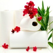 Toilet Paper with Flowers