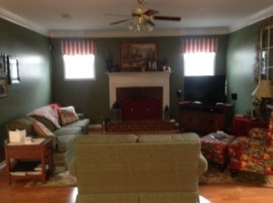 have a green couch and rug and a red accent chair i currently have a ...
