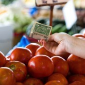 Buying tomatoes with cash.