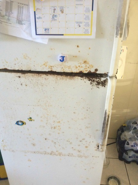 rusty fridge