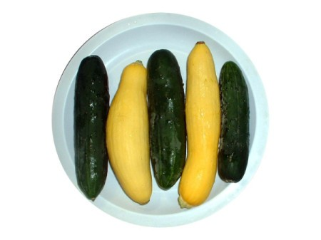 plate with yellow squash and cucumbers