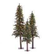 trio of skinny decorative trees