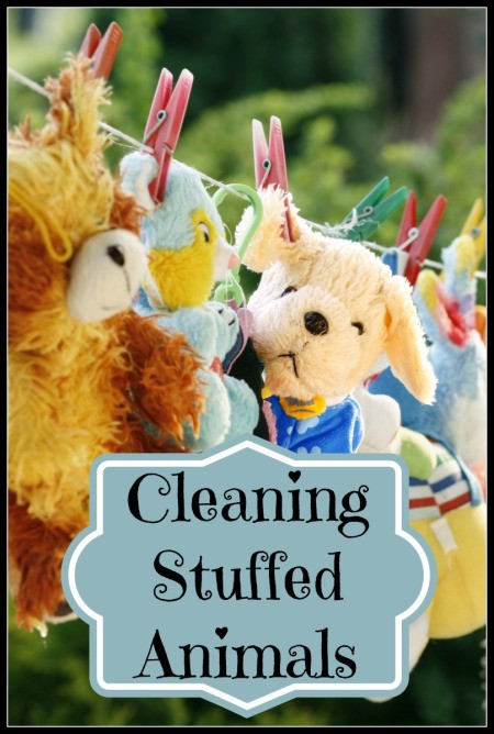 Cleaning Stuffed Animals