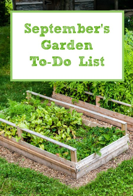 September's Garden To-Do List