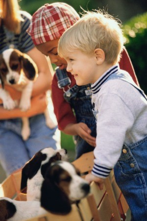 children with puppies