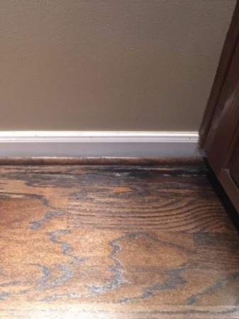 Identifying Cat Urine Stains on Hardwood Floor