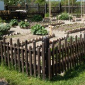 A fenced vegetable and flower garden.