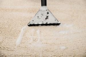 Homemade Carpet Shampoo Recipes Thriftyfun