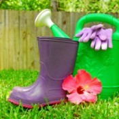 Hibiscus flower, goulashes, watering can, and gardening gloves displayed on grass with a wooden fence in the background.