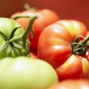 Close up of two green and two red tomatoes on basket