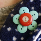 button brooch on collar