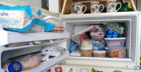 Organize your Freezer with Plastic Shoe Boxes