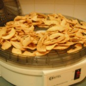 Drying Apples in a Dehydrator