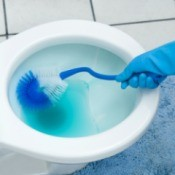 A toilet being cleaned with blue water.