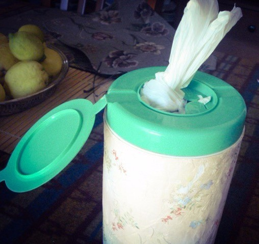 Diy Plastic Bag Dispenser Thriftyfun