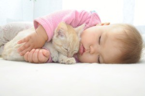 sleeping baby and kitten