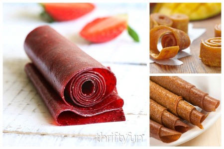 Homemade Fruit Roll Up Recipes