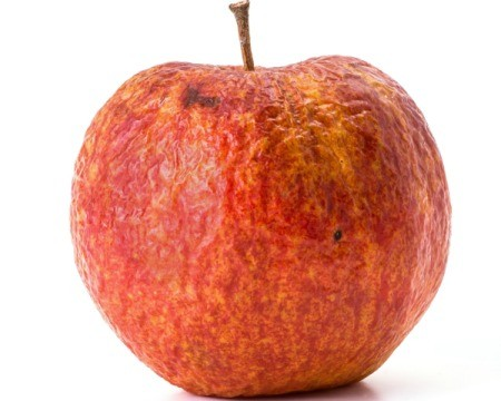 Old apple isolated against a white background