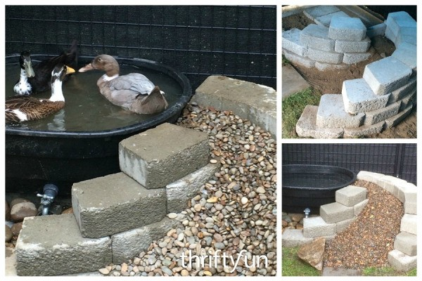 Making A Backyard Duck Pond :  need a some type of pond This is a guide about making a duck pond