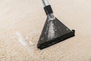 Close up of a carpet being shampooed
