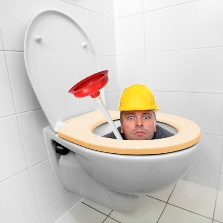 Plumber holding a plunger peeking out from inside a toilet