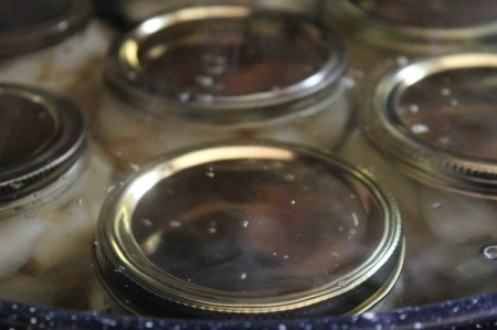 canning jar lids showing in canning pot