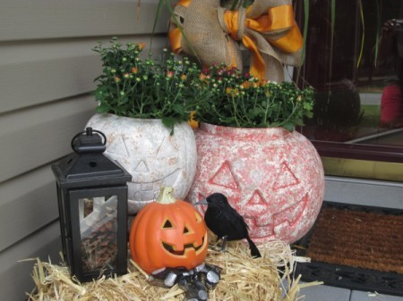 display with potted plants inside the pumpkins and other decorations
