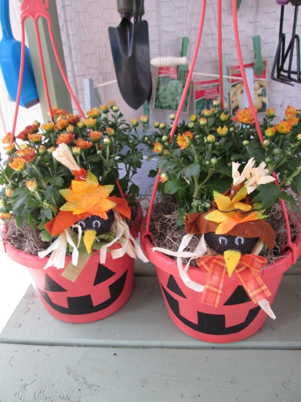 two pumpkin pots