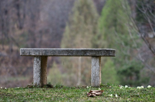 Concrete bench on grass
