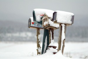 Several snow covered mailboxes at the edge of a snowy field