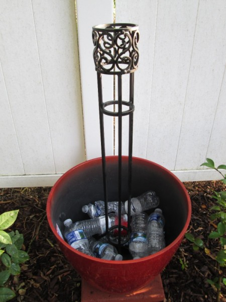 Filler Ideas For Potted Plants Thriftyfun