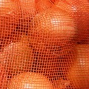Close-up of oranges in an orange net bag