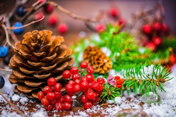Pinecone, berries, bits of evergreen branches with fake snow