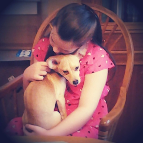 young girl holding a tan dog