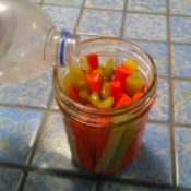 A canning jar with cut up carrots and celery.