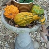 Seasonal Bird Bath Decoration