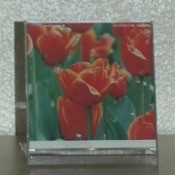 CD Jewel Case Décor