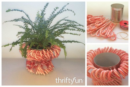 Making a Candy Cane Planter