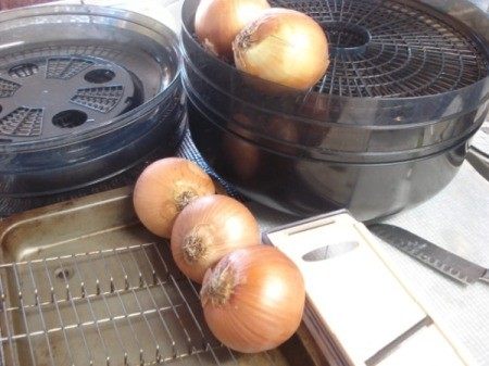 onions, slicer and pan