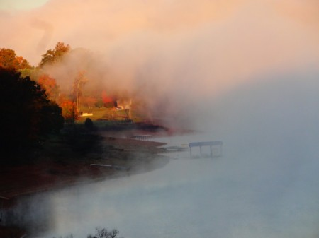 fall colors through fog along lake shore