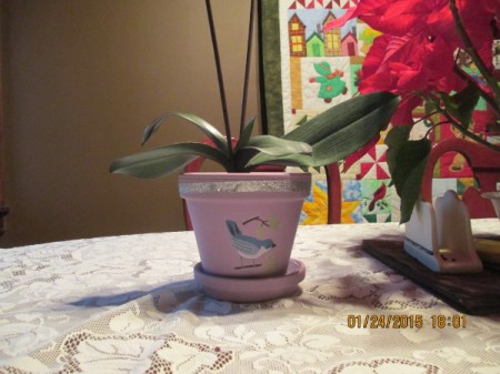 painted clay pot with bluebird decal and silver ribbon