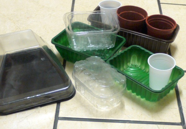 Plastic Food Containers for Seedlings - examples of containers