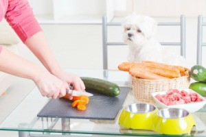 Dog watching a woman cut meat and Veggies.